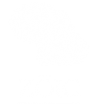 zoic-wh